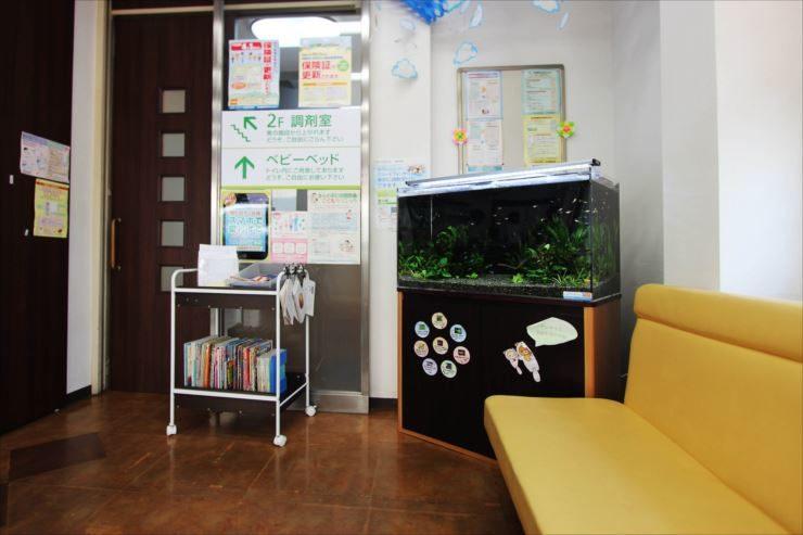 墨田区 薬局の待合室 90cm淡水魚水槽 設置事例 水槽画像2