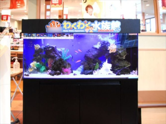 飲食店の待合ロビー 120cm海水魚わくわく水槽 設置事例 メイン画像