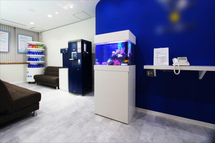荒川区 オフィス 60cm海水魚水槽 設置事例 メイン画像