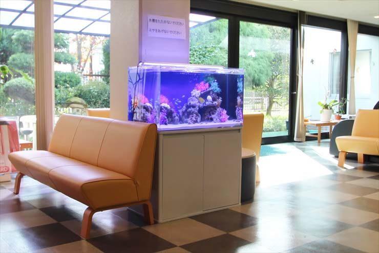 府中市 オフィス事務所 90cm海水魚水槽 設置事例 メイン画像