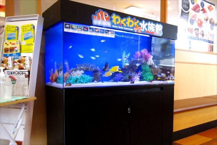 飲食チェーン店の待合スペース わくわく水族館 設置事例 メイン画像