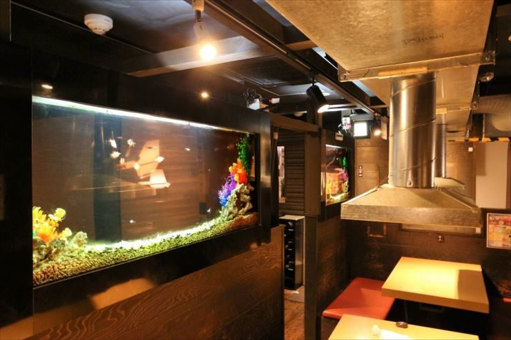 八王子 飲食店 大型水槽メンテナンス事例 メイン画像