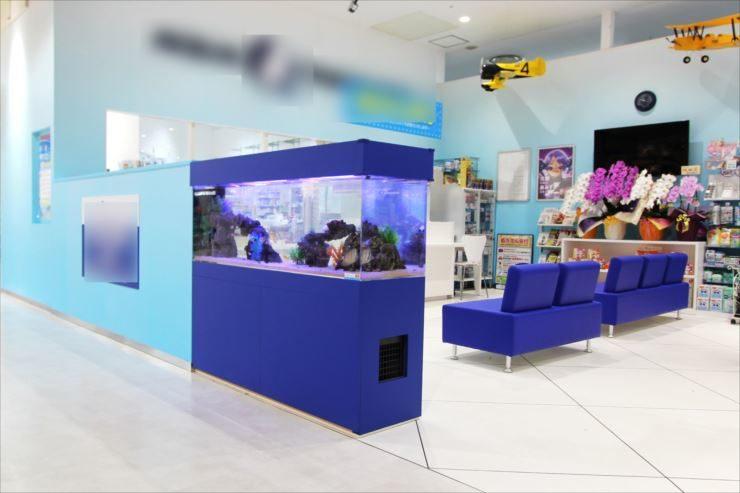 神奈川県相模原市 薬局の待合室 150cm海水魚水槽事例 水槽画像1