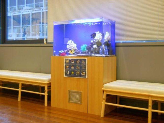 都内 企業様  90cm海水魚水槽  設置事例 メイン画像