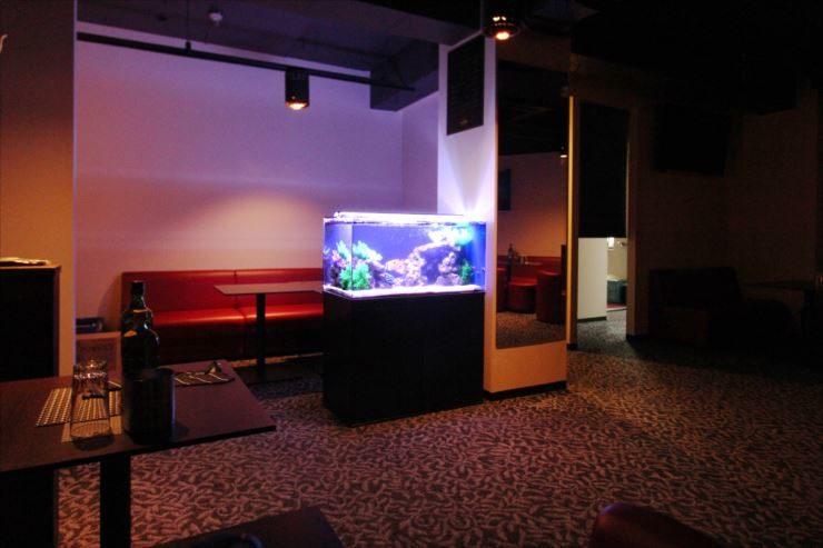 神奈川県 川崎市 飲食店内に設置 90cm海水魚水槽事例 メイン画像