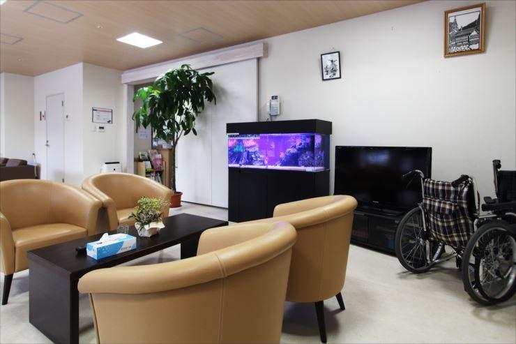 特別養護老人ホーム 120cm海水魚水槽 設置事例 メイン画像