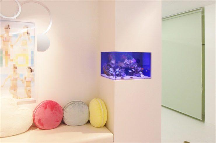 千葉県 大手美容サロン店 60cm海水魚水槽 設置事例 メイン画像