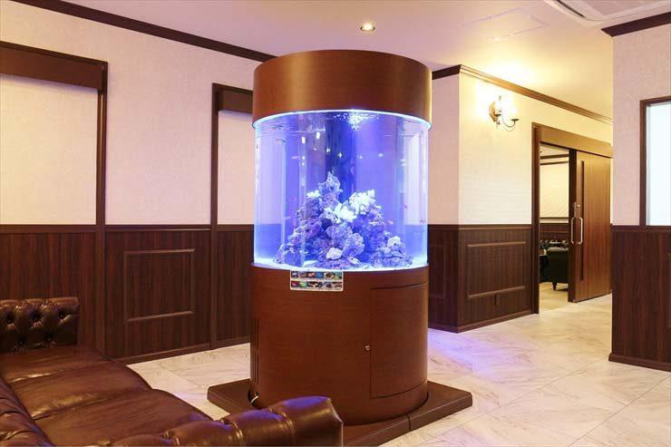 港区のクリニックに設置 大型円柱水槽(海水魚水槽)の事例 メイン画像
