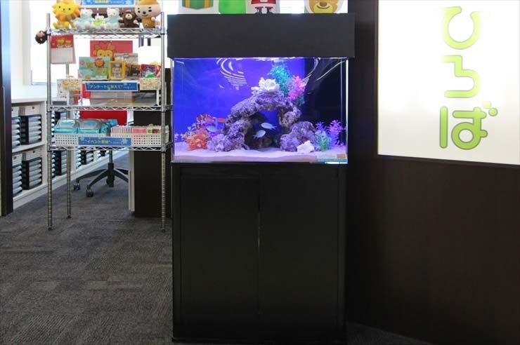 埼玉県 日高市 保険相談所 60cm海水魚水槽 設置事例 メイン画像
