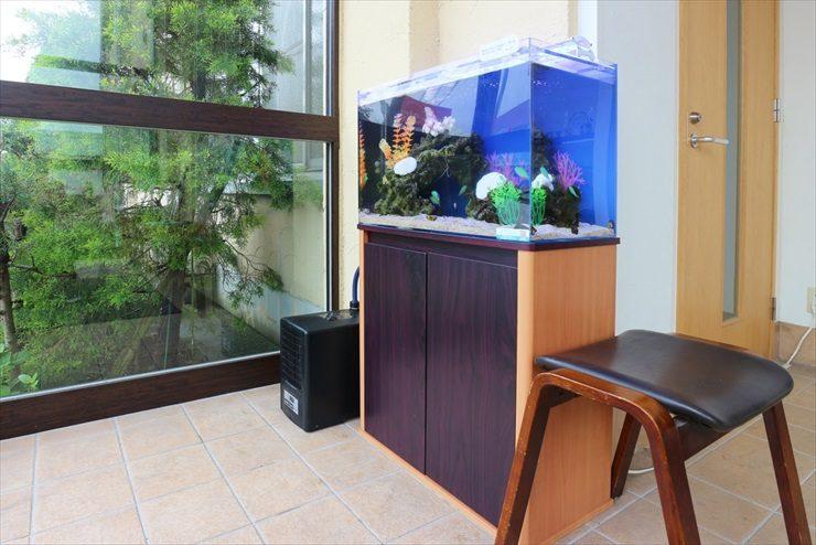 歯科医院のエントランス 60cm海水魚水槽 設置事例 メイン画像