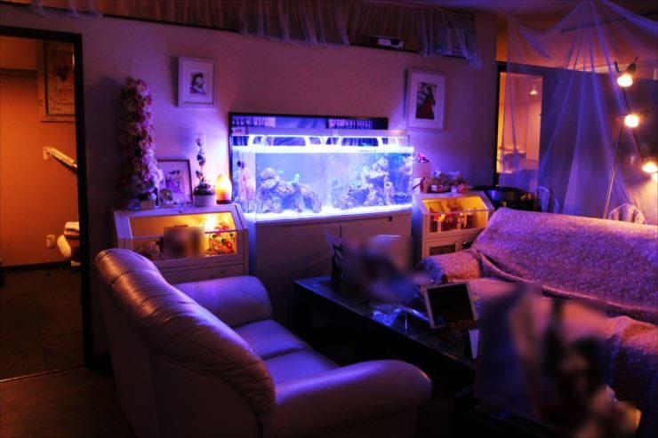 立川市 美容サロンに設置 120cm海水魚水槽事例 メイン画像