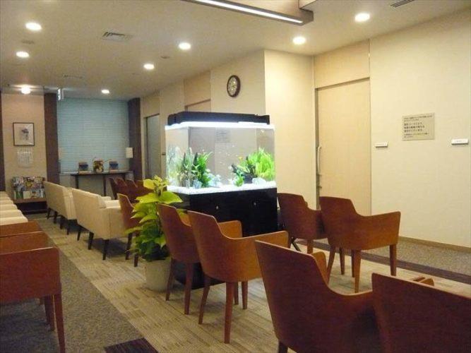新宿区 検診センター様 90cm淡水魚水槽  設置事例 メイン画像
