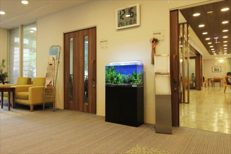府中市 老人ホームに設置 60cm淡水魚水槽事例 メイン画像