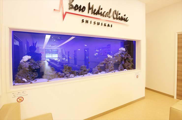 房総メディカルクリニック様 大型海水魚水槽設置事例 メイン画像