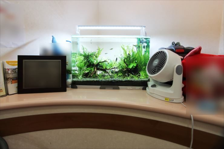 横浜市 歯科医院の待合室に設置 60cm水草水槽事例 メイン画像