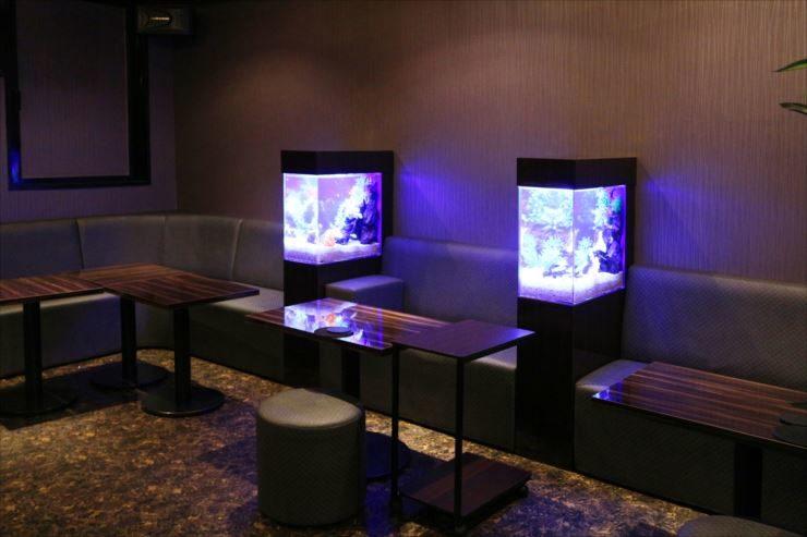 飲食店 フロアに設置 2台の淡水魚水槽事例 メイン画像
