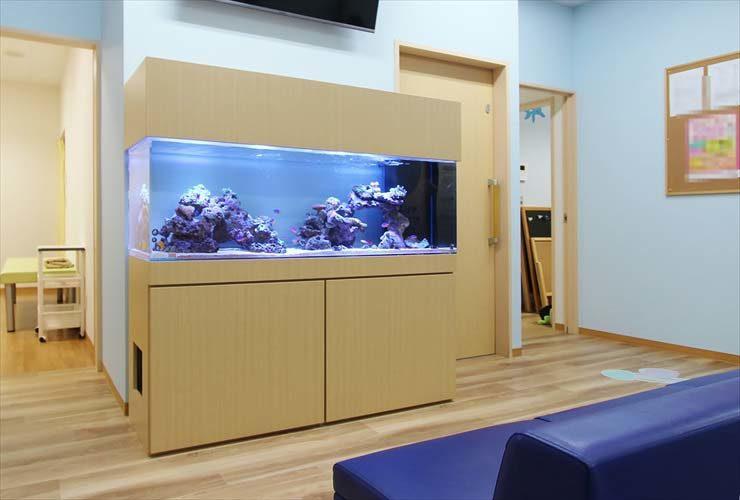 茨城県守谷市 医療施設に設置 大型海水魚水槽事例 メイン画像