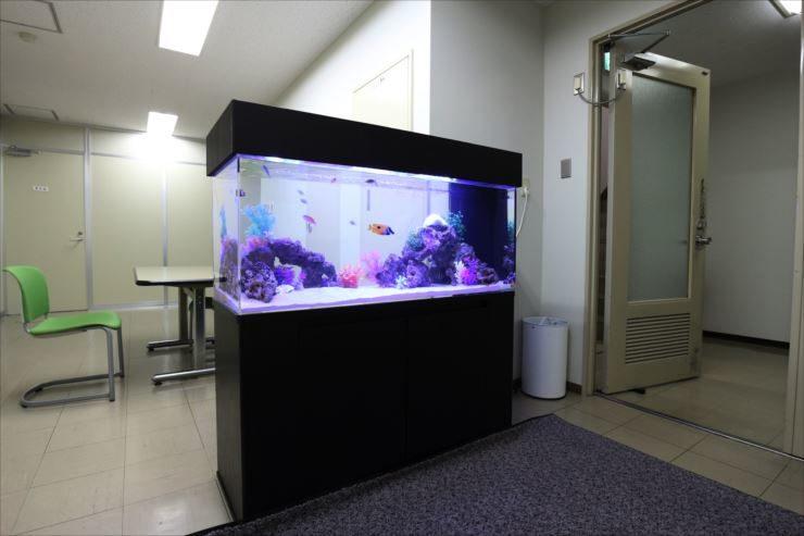 オフィスのミーティングスペースに設置 90cm海水魚水槽事例 メイン画像