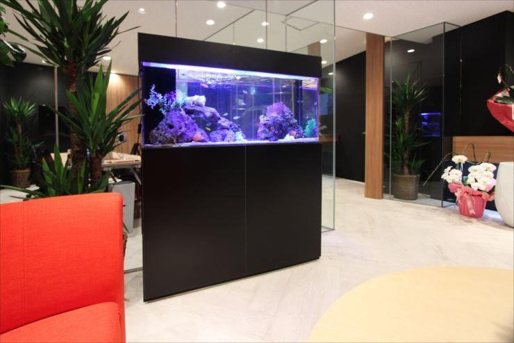 千代田区 オフィスのエントランスに設置 120cm海水魚水槽リース 水槽画像3