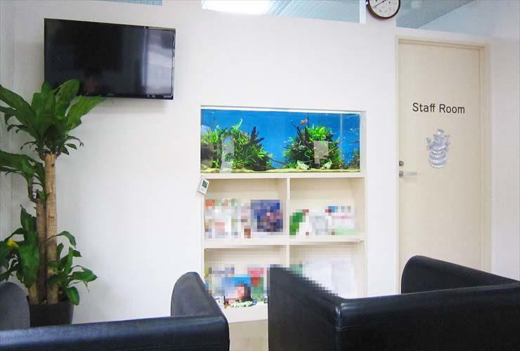 クリニックの待合室に設置 壁埋め込み型 淡水魚水槽事例 メイン画像