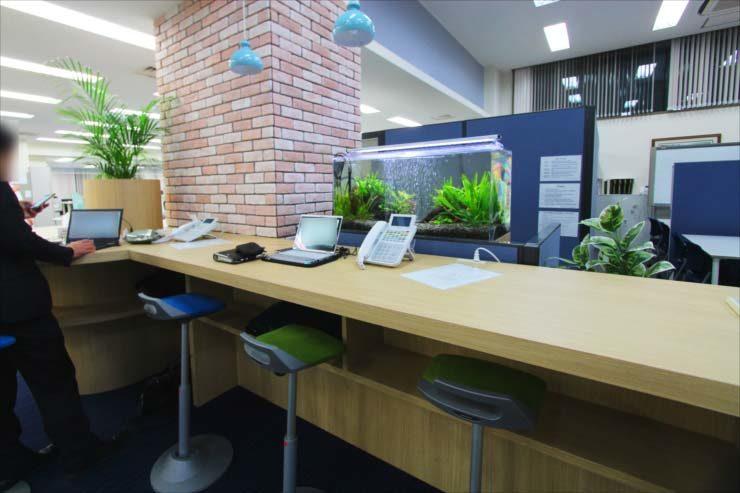 千代田区 オフィスに設置 両面仕様90cm淡水魚水槽事例 メイン画像