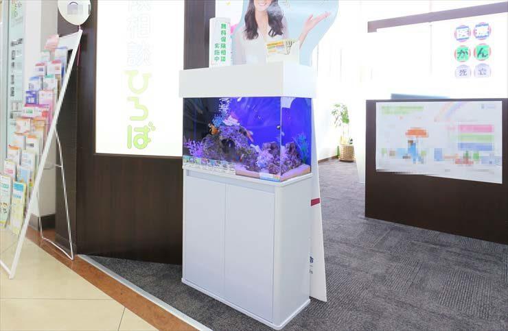 千葉県佐倉市 保険相談所 60cm海水魚水槽設置事例 メイン画像