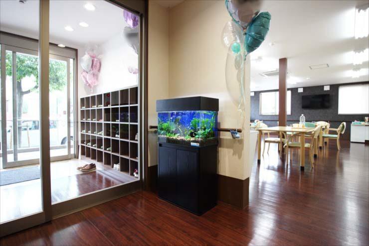 介護施設の入り口に設置 60cm淡水魚水槽事例 メイン画像
