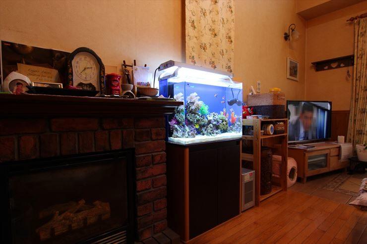 神奈川県 横浜市 個人宅 60cm海水魚水槽 設置事例 メイン画像