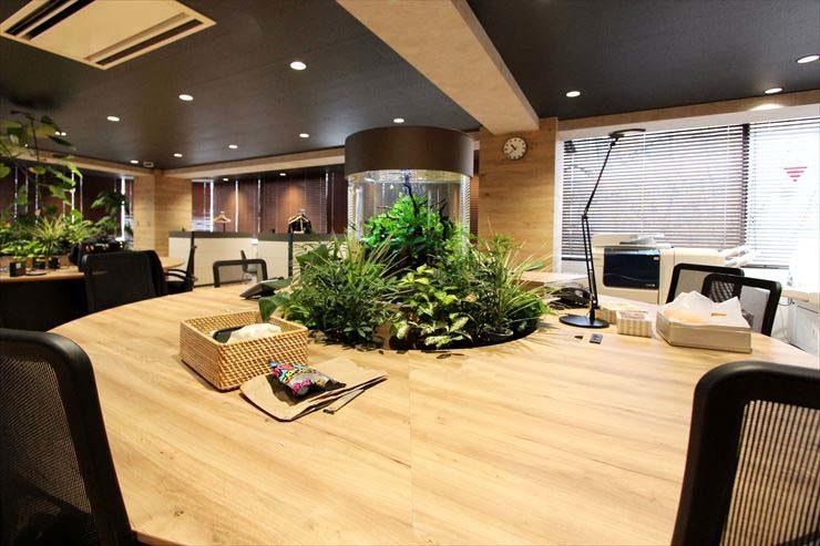 渋谷区 企業 ワークスペースに設置 円柱アクアリウム2台 水槽販売事例 水槽画像2