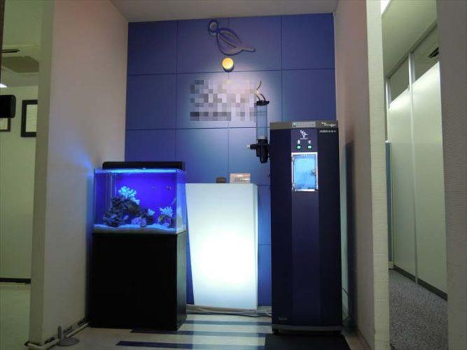 荒川区 企業様のエントランスに設置  アクアリウム(海水魚水槽)の事例  メイン画像
