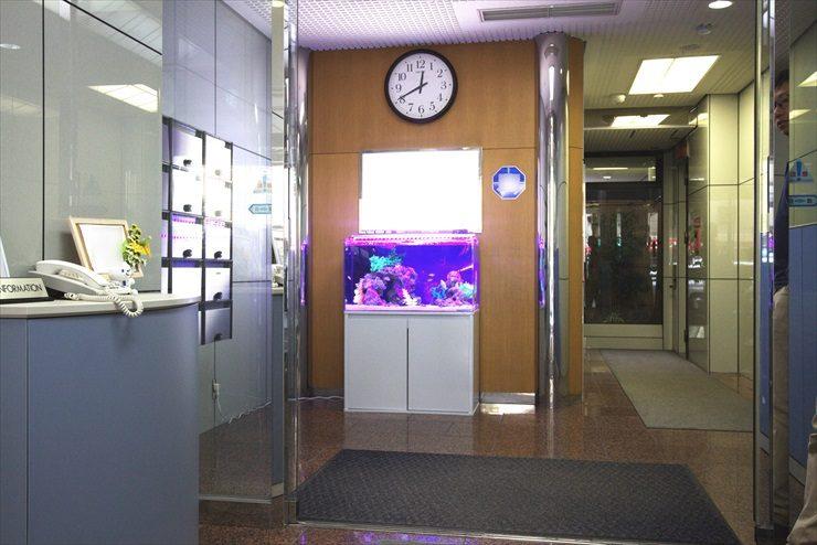 オフィスのエントランスに設置 アクアリウム(海水魚水槽)の事例 メイン画像