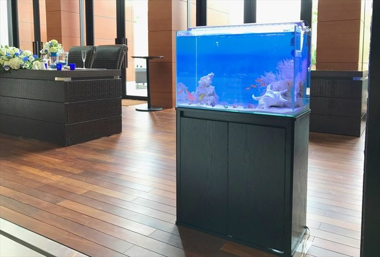 結婚式場に設置 アクアリウムウエディング(海水魚水槽)の事例 メイン画像