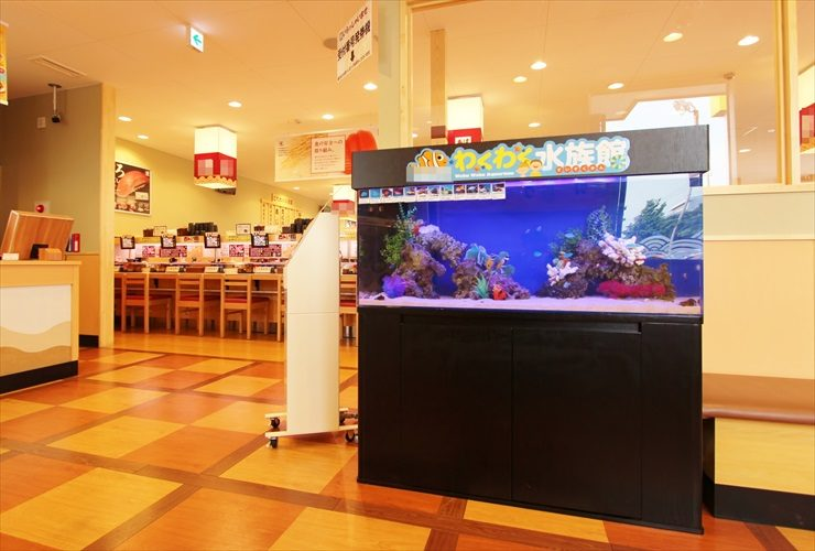 飲食店(回転寿司チェーン店)に設置 海水アクアリウムの水槽レンタル事例 メイン画像