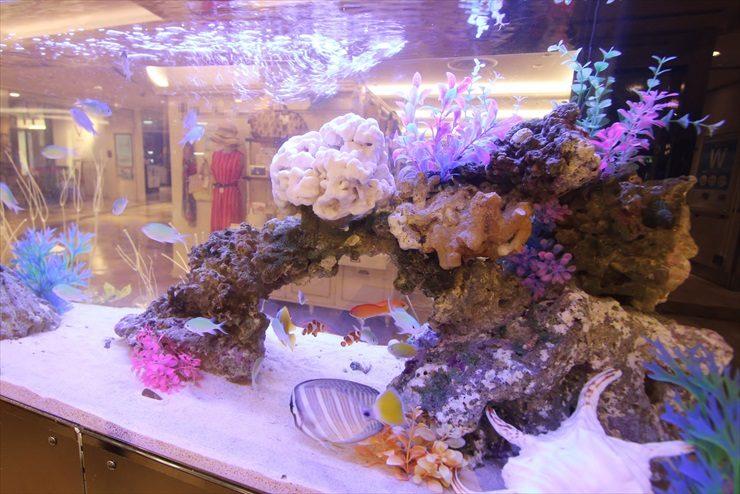 百貨店イベントに設置 海水魚水槽(短期レンタル)の事例 水槽画像3