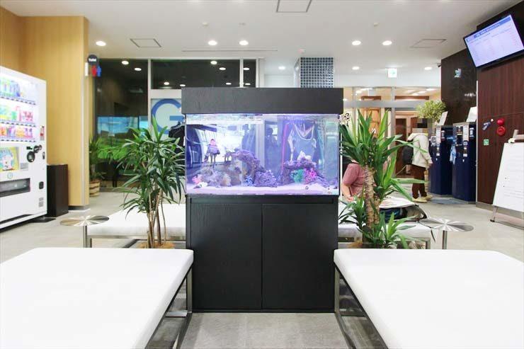 神奈川県 横浜市 スポーツクラブの待合室に設置 アクアリウム(90cm海水魚水槽)の事例