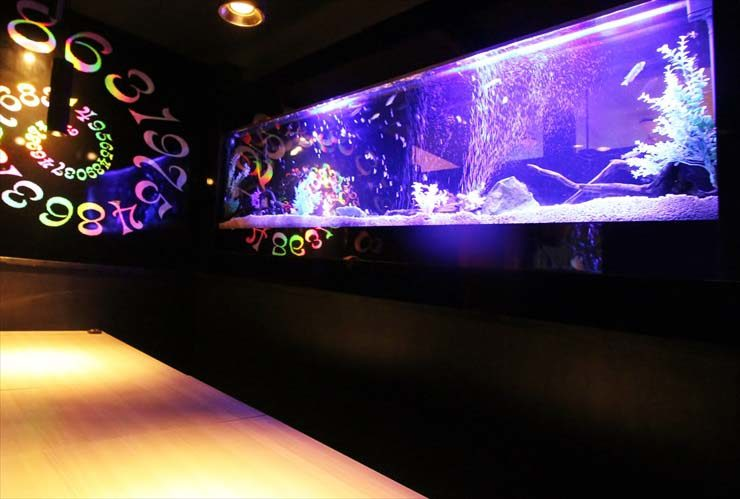 飲食店 大型 特殊水槽 リニューアル(水槽メンテナンス)の事例 メイン画像