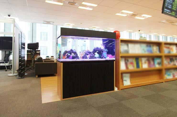 千代田区 企業様オフィスに設置 120cm海水アクアリウムの事例 メイン画像