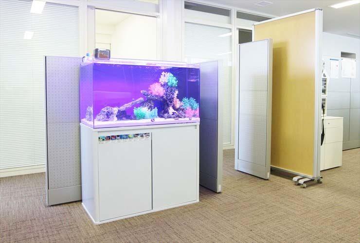 福祉財団施設に設置 海水アクアリウム(横幅90cm水槽)の事例 メイン画像
