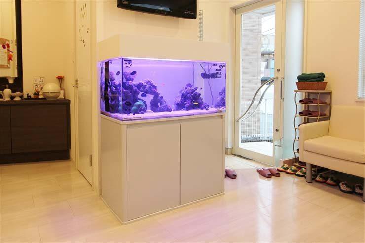 横浜 歯科医院 水槽入れ替え事例 美しいサンゴアクアリウム メイン画像