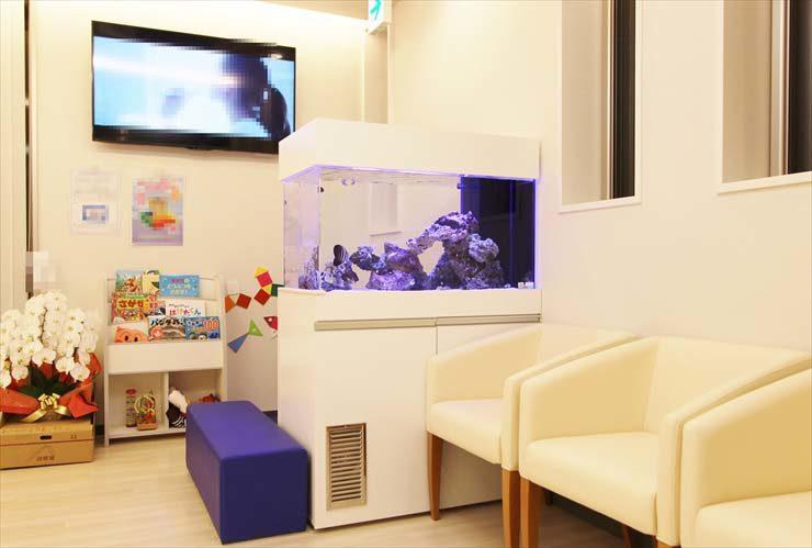 千葉県 歯科クリニック 待合室 水槽販売 設置 メンテナンス事例
