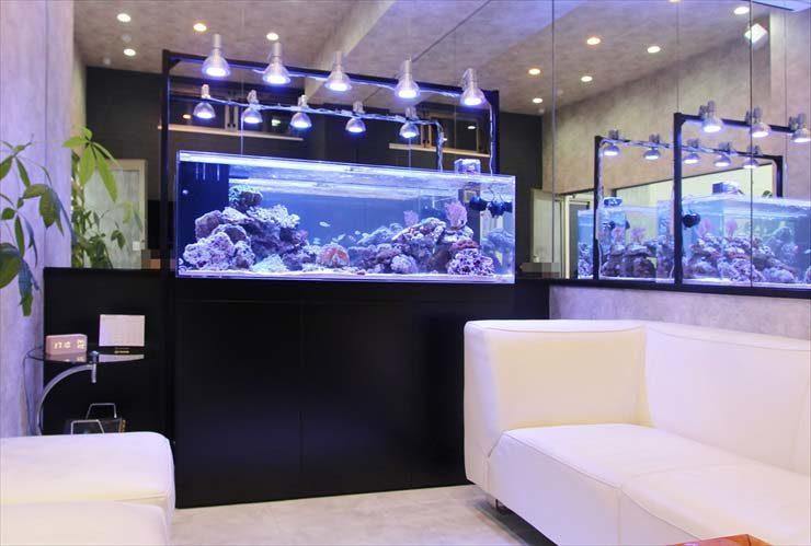 神奈川県 川崎市 オフィスに設置 150cmサンゴ水槽 大型アクアリウム事例 メイン画像