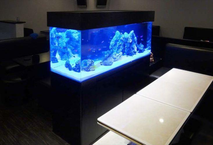 飲食店 クラブに設置 120cm海水アクアリウム 水槽導入事例 メイン画像
