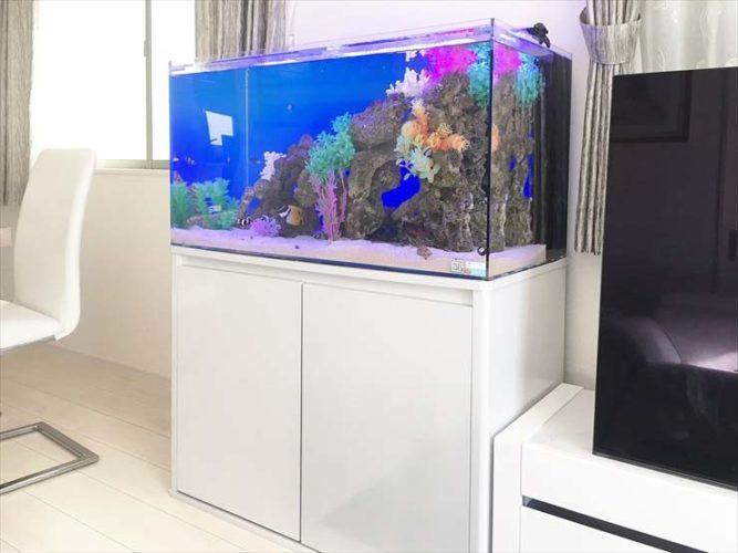 自宅のリビングに設置 90cm海水魚水槽 アクアリウム導入事例 メイン画像