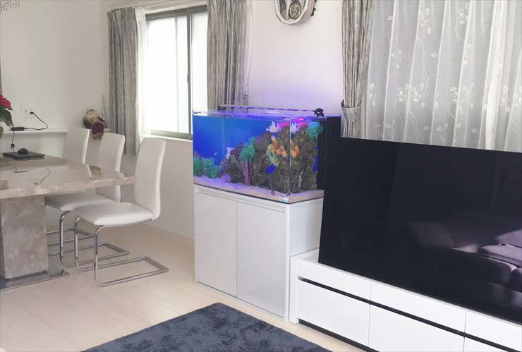 自宅のリビングに設置 90cm海水魚水槽 アクアリウム導入事例 水槽画像3