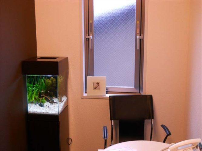 東京都渋谷区 企業様  30cm淡水魚水槽  設置事例 メイン画像