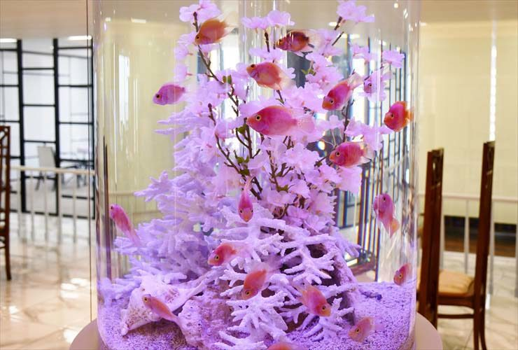 渋谷区 オフィス 円柱水槽 春を感じる桜 レイアウトをリニューアル メイン画像
