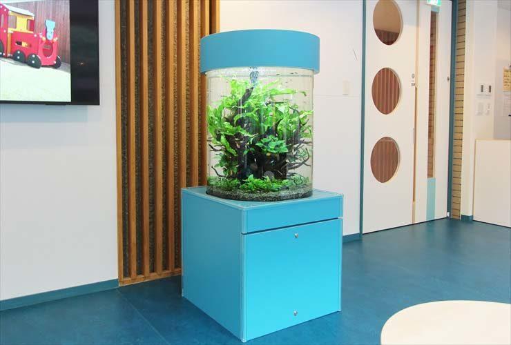 世田谷区 保育園 エントランス 円柱アクアリウム 設置事例 メイン画像