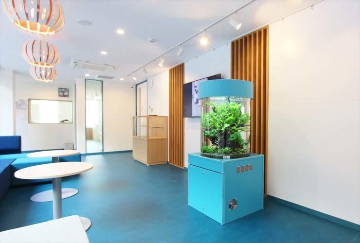 世田谷区 保育園 エントランス 円柱アクアリウム 設置事例 水槽画像2