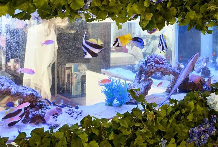 目黒区 オフィス  特殊L字水槽 リニューアル事例 水槽画像2