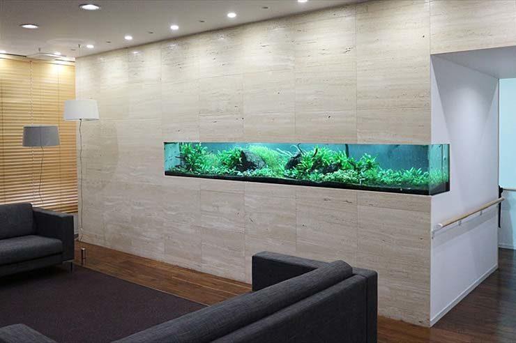 クリニック 待合室 大型淡水魚水槽 メンテナンス事例 メイン画像